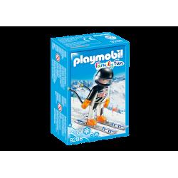 Skieur Alpin-9288
